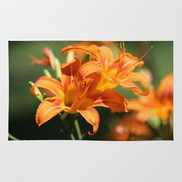Day Lily Dance Rug
