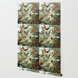 Vintage Hummingbirds Decorative Illustration Wallpaper