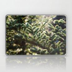 Pine Laptop & iPad Skin