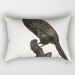 Black-necked Aracari male from Histoire Naturelle des Oiseaux de Paradis et Des Rolliers (1806) by J Rectangular Pillow