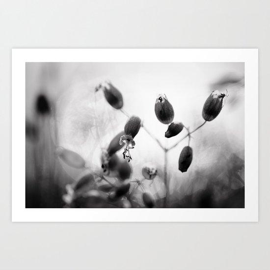 Light shimmers through Art Print
