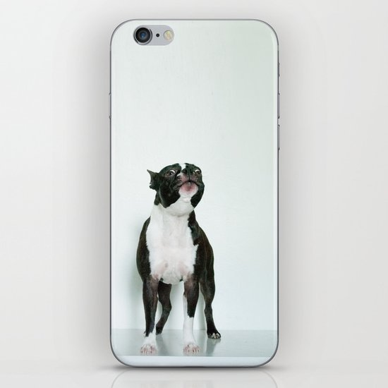 The Howler iPhone & iPod Skin