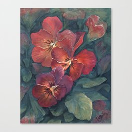 Pansies in the Twilight Canvas Print