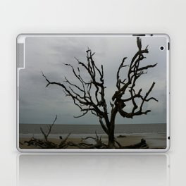 Ghost Tree Beach Laptop & iPad Skin
