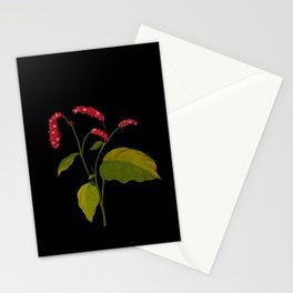 Polygonum Orientale Mary Delany Floral Paper Collage Delicate Vintage Flowers Stationery Cards