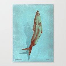 headfish... Canvas Print