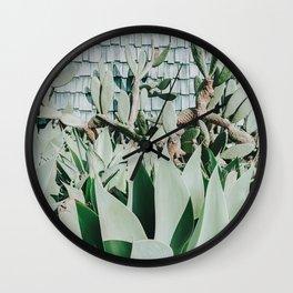 Succulents II / San Diego, California Wall Clock
