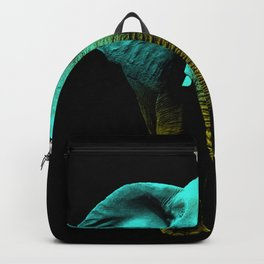 Friends for Life fluro Backpack