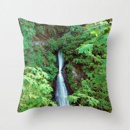 Shepperd Dell Falls Throw Pillow