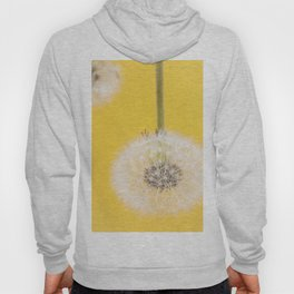 Whishes on yellow Hoody