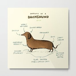 Anatomy of a Dachshund Metal Print