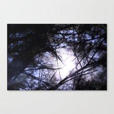 Temperance I Canvas Print