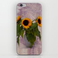 sunflowers iPhone & iPod Skins featuring Sunflowers  by Guna Andersone & Mario Raats - G&M Studi