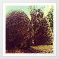 nests Art Print