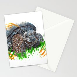 Galapagos Tortoise Stationery Cards