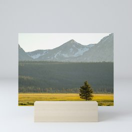 Lone Tree in the Sawtooths Mini Art Print