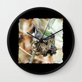 The Hummingbird Nest. © J&S Montague. Wall Clock
