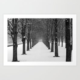 Science Trees in the Snow Art Print