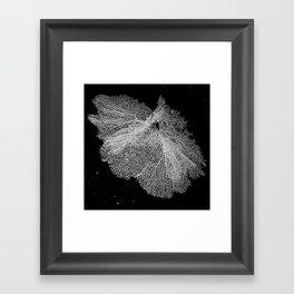 Fan Coral Framed Art Print