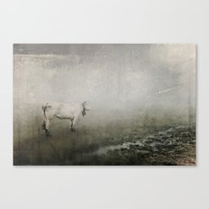 Unsure Canvas Print