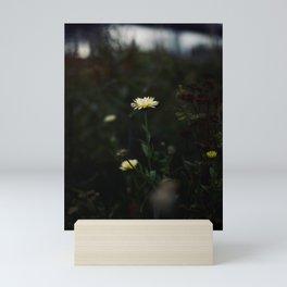 Flower Photography by Sami Hobbs Mini Art Print