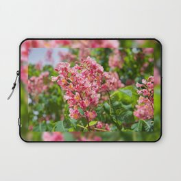 Aesculus red blossom cluster Laptop Sleeve
