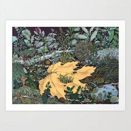 ian leaf Art Print