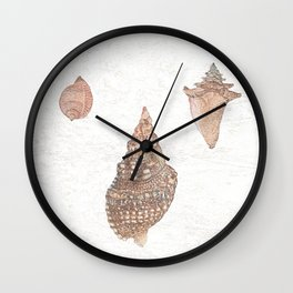She sells Seashells by the seashore Wall Clock