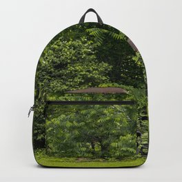 Long term parking Backpack
