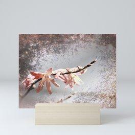 Elegant Coral colored Crocosmia Flowers Mini Art Print