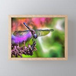 Dragonfly Framed Mini Art Print