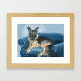 German Shepherd Angus Framed Art Print