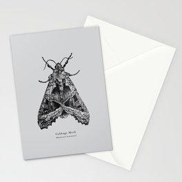 Cabbage Moth [Mamestra brassicae] Stationery Cards