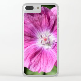 Pink summer flower blossom (Macro Close-Up) Clear iPhone Case