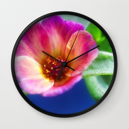 Pink Portulaca Flower Wall Clock