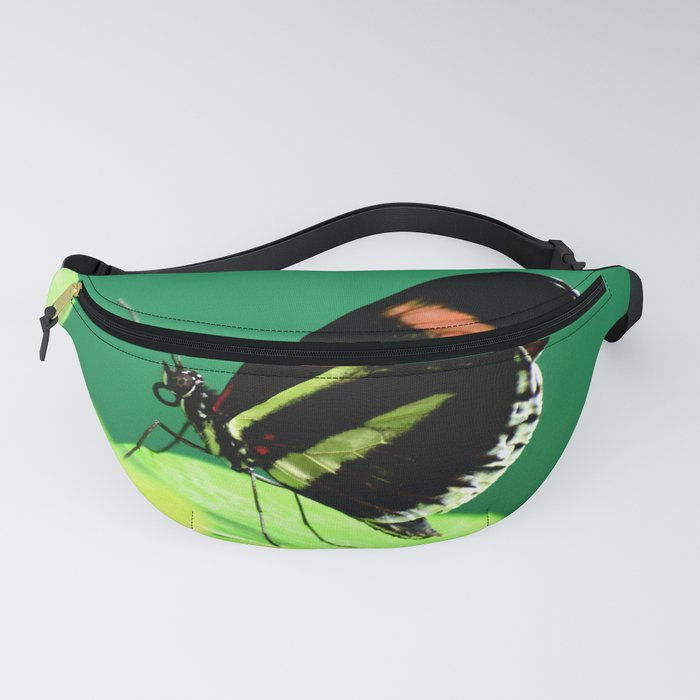 Piano Key Butterfly left facing Fanny Pack