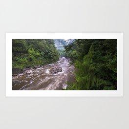 Upper Ngakawau River in flood, Charming Creek Walkway, Buller, New Zealand. Art Print