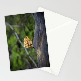 Fungal remains Stationery Cards
