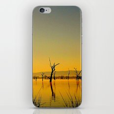 Scupltures in the Lake iPhone & iPod Skin