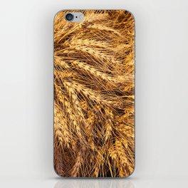 bunch of wheat iPhone Skin