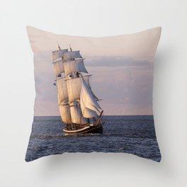 Brigg Morgenster Throw Pillow