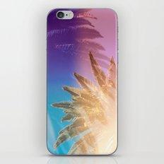 LA Dreaming iPhone & iPod Skin