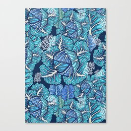 blue winter cabbage Canvas Print