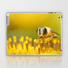 Pollen Feast Laptop & iPad Skin