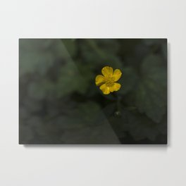 Build Me Up Buttercup Metal Print