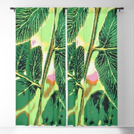 party fern Blackout Curtain