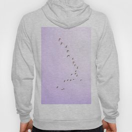 Fly for Peace Hoody