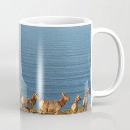Tule Elk Cows Coffee Mug