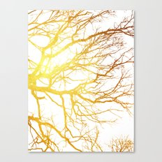 Gold Branches Canvas Print