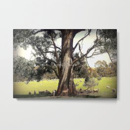 Under the shade of a Coolabah Tree Metal Print